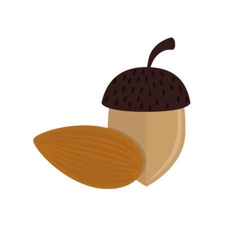 eatable: hazelnut nut snack organic natural fruit vector illustration