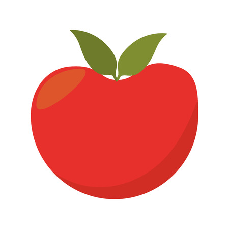 tomato vegetable red natural and organic food vector illustration Illustration