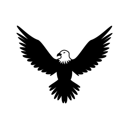 celebrities: eagle hawk bird wings animal insignia emblem vector illustration