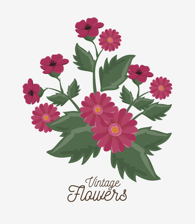 vintage flowers decoration icon vector illustration icon