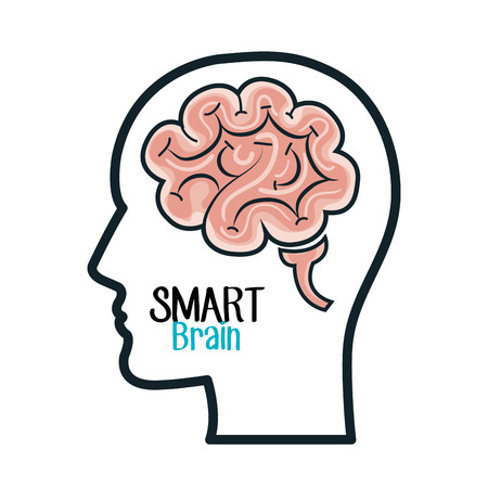 smart: brain, human, smart Illustration