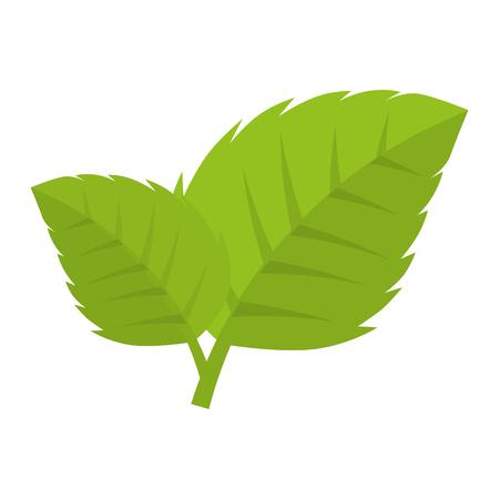 enviroment: leaves natural green plant ecology sheet foliage enviroment vector illustration