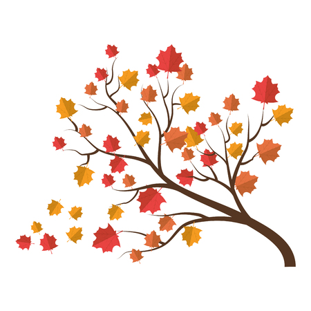 dry leaves: tree autumn season branch dry leaves foliage tall plant vector illustration
