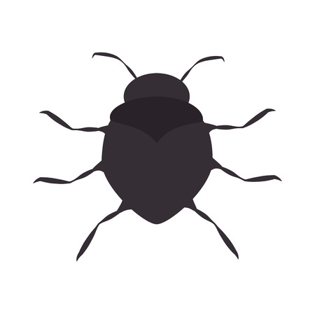 infestation: bug insect pest virus animal antenna beetle vector illustration