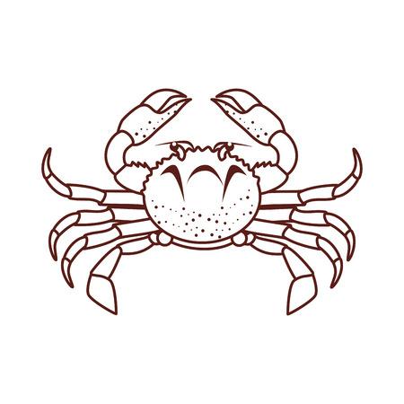 Cangrejo De Mar Animales Marisco Agua Ilustración Vectorial De ...
