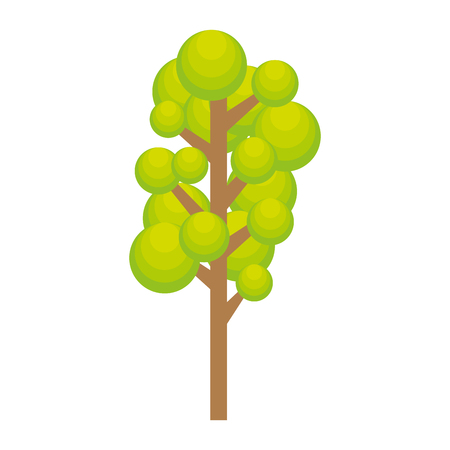 foliage  natural: green tree tall plant natural ecology foliage vector illustration Illustration