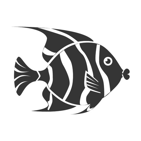 물고기 스톡 콘텐츠 - 62134959