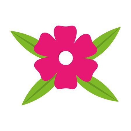 petals: icon flower spring petals florals