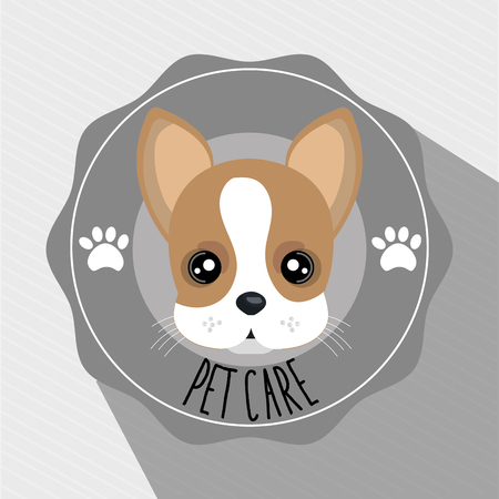 dog pet care icon vector illustration icon eps 10