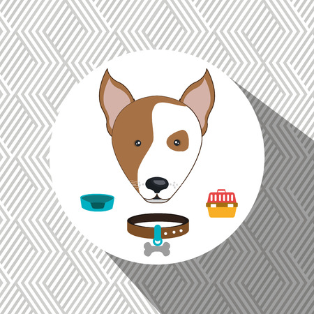 chain food: dog plate collar icon vector illustration eps 10