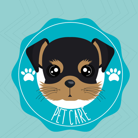 dog pet care icon vector illustration icon eps 10