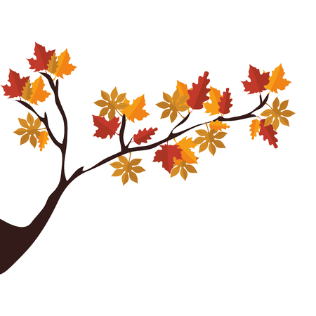 lush foliage: tree branch with autumn season dry leaves vector illustration