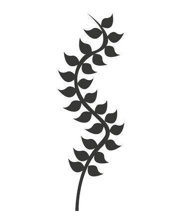 kelp: kelp plant isolated icon vector illustration design
