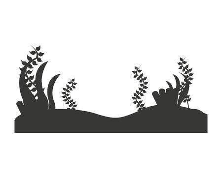 alga marina: planta de algas marinas aisladas icono de ilustración vectorial de diseño Vectores