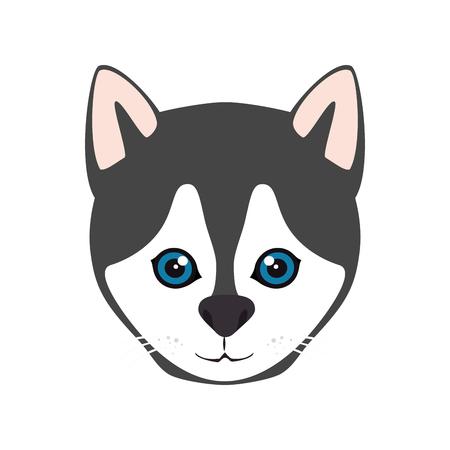 canine: siberian husky breed dog canine pet animal. puppy cartoon. vector illustration