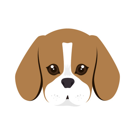 beagle puppy: beagle breed dog canine pet animal. puppy cartoon. vector illustration
