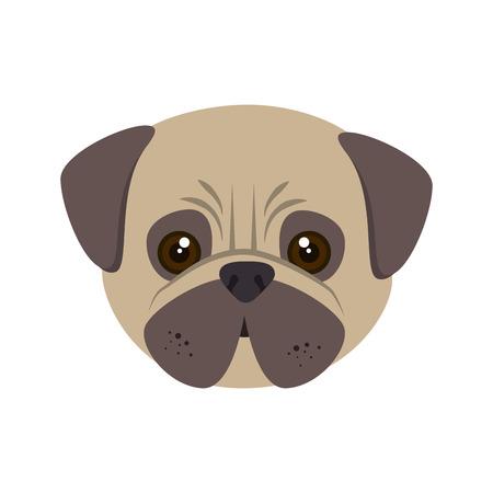 canine: pug breed dog canine pet animal. puppy cartoon. vector illustration