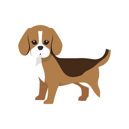 dalmatian: beagle breed dog canine pet animal. puppy cartoon. vector illustration