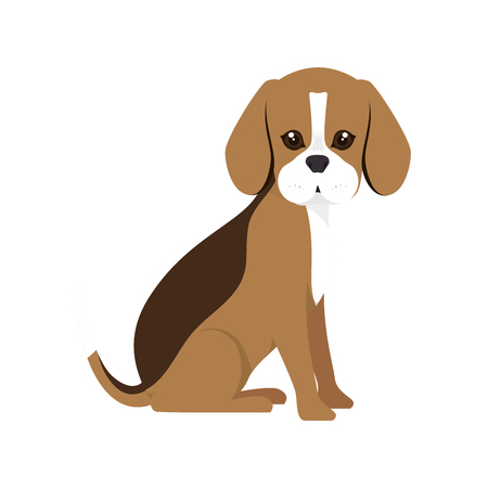 canine: beagle breed dog canine pet animal. puppy cartoon. vector illustration