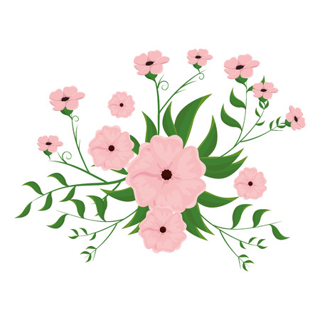 pink floral natural and beautiful flowers with green leaves. vector illustration