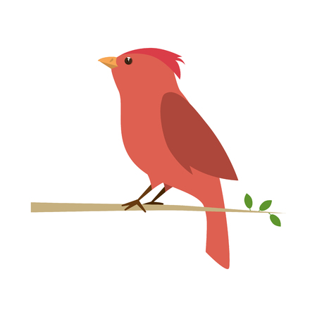 red bird cartoon colorful animal. side view. vector illustration