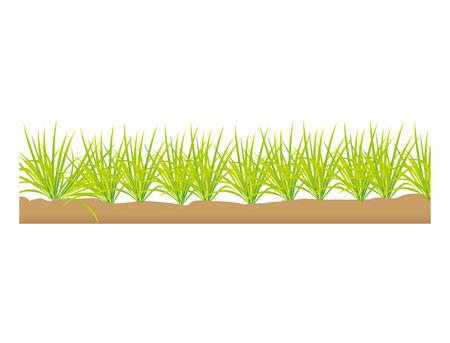 grass field: grass terrain field isolated icon vector illustration design Illustration