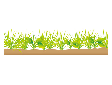 terrain: grass terrain field isolated icon vector illustration design Illustration