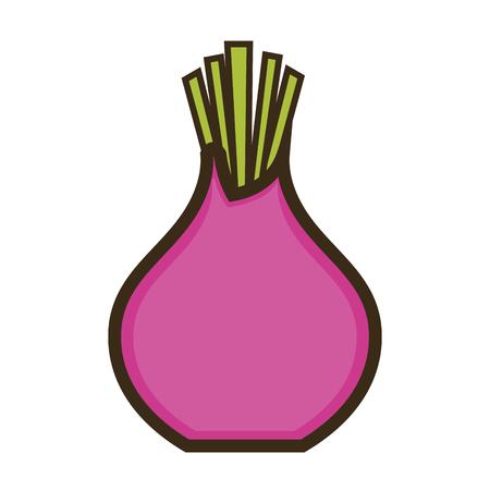 beetroot purple avec des feuilles vertes. nourriture végétale. illustration vectorielle