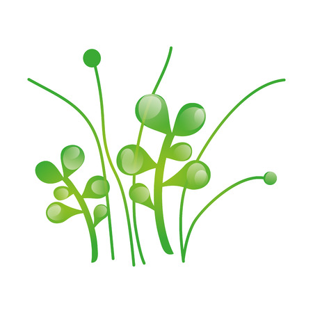 germinate: green grass plant growing nature. vector illustration
