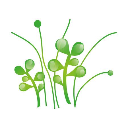 herbe verte nature plante croissante. illustration vectorielle