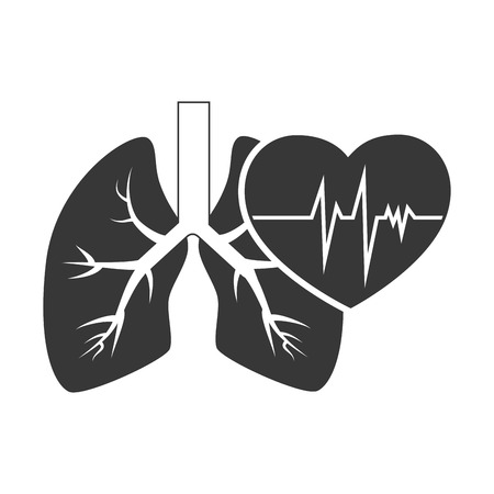 cardio pulse heart with human organ lungs. vector illustration