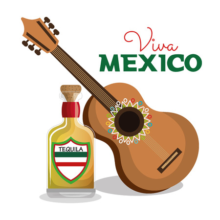 pinata: viva mexico guitar and bottle tequila graphic vector illustration eps 10 Illustration