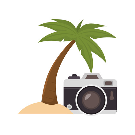 photographic camera device and palm tree icon over white background. vector illustration Illustration