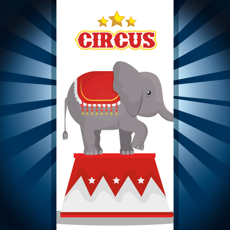 playfull: circus elephant festival show over blue and white background. vector illustration