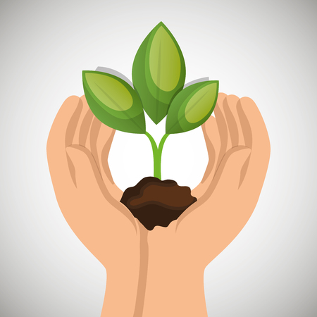 hands holding plant: hands holding plant green concept ecological vector illustration