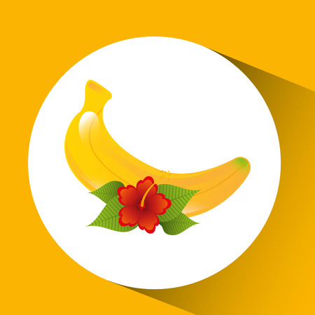 red flower and tropical banana fruit design vector illustration Illustration