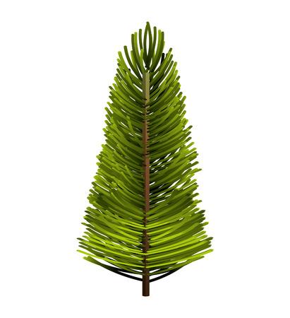 christmas tree illustration: tree plant pine christmas vector illustration design
