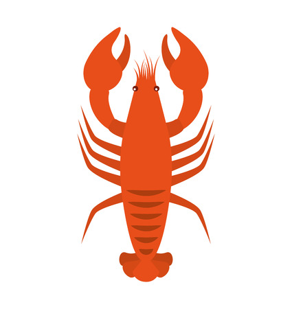 lobster seafood animal isolated icon vector illustration design Illustration