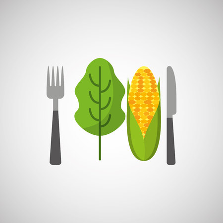 fresh eating lettuce with cob vector illustration