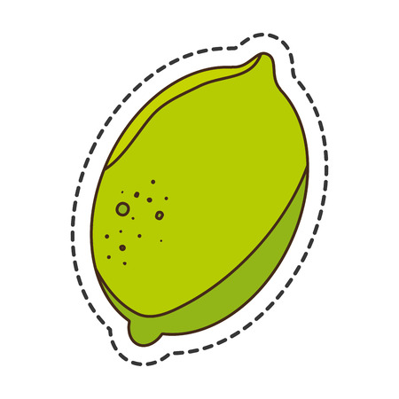 cut line: fresh fruit cut line isolated icon vector illustration design Illustration