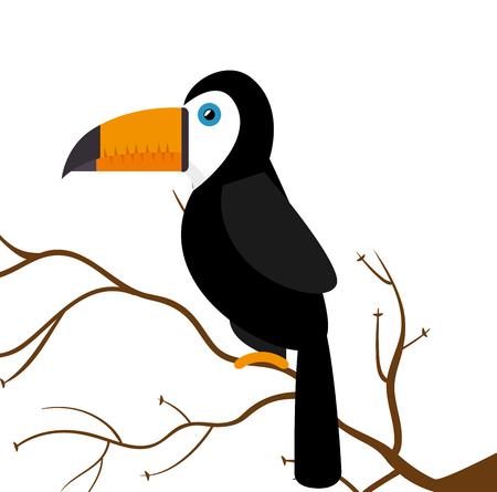 ful: toucan parrot brazil on branch vector illustration eps 10 Illustration