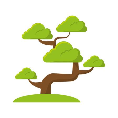 bonsai tree culture japanese vector illustration