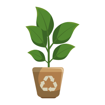 plant with pot isolated icon vector illustration design