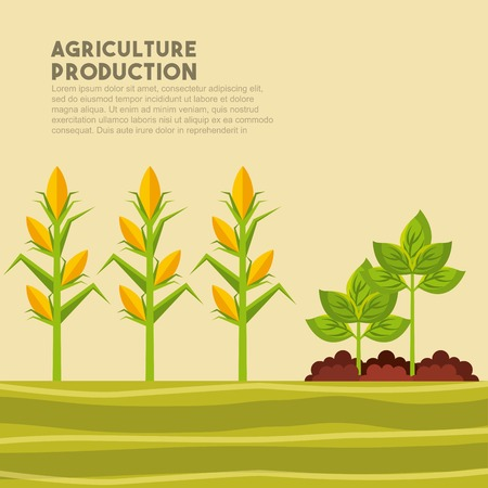 plow: harvest of corn and plants growing. agriculture production concept. colordul design. vector illustration
