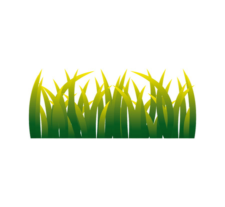 natural grass isolated icon vector illustration design