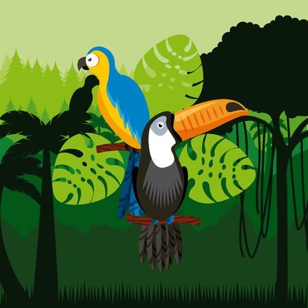 tucan: toucan and macaw birds over jungle background. colorful design. vector illustration