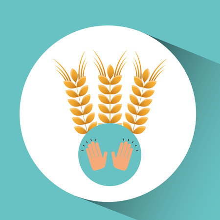 wheaten: wheat spike bakery concept vector illustration eps 10 Illustration