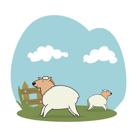 sheeps in the field vector illustration design Illustration
