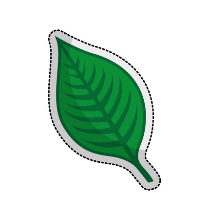 leafs plant isolated icon vector illustration design Illustration