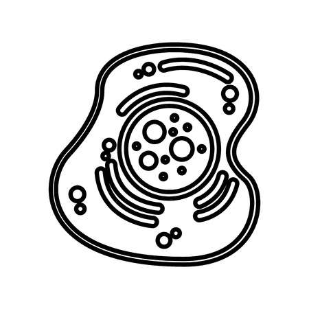 lysosome: cell structure isolated icon vector illustration design